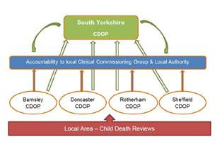 Child death reviews feed into the local child death overview panels which have accountability to clinical commissioning groups and local authorities